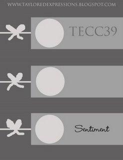 TECC39_(sketch)