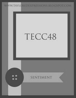 TECC48_(sketch)
