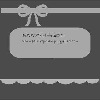 ESS_sketch22