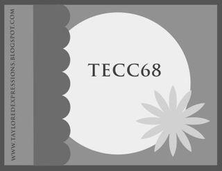 TECC68(sketch)