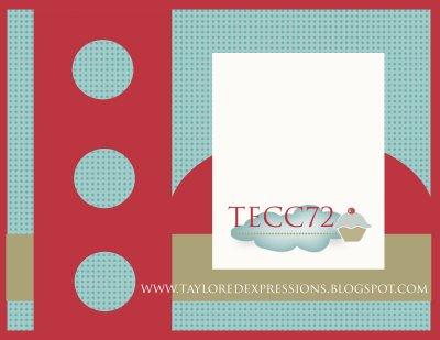 TECC72(sketch)