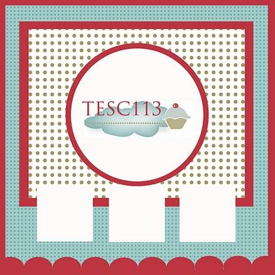 TESC113