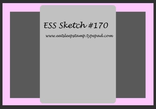 Sketch 170