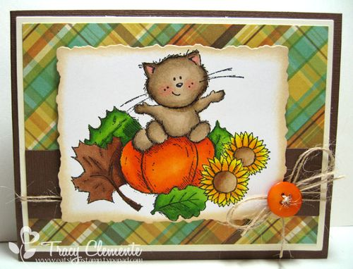 09112013_autumn kitty_TRACY