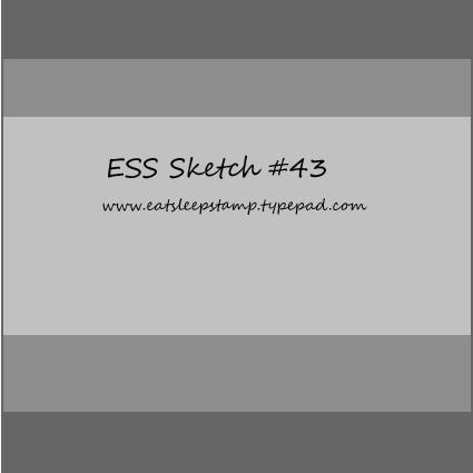 Sketch 43